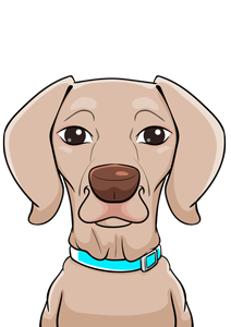 Maya Dog Emotional Counselor of Insurance